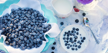 Mirtilo é anticancerígeno e bom para memória dos idosos