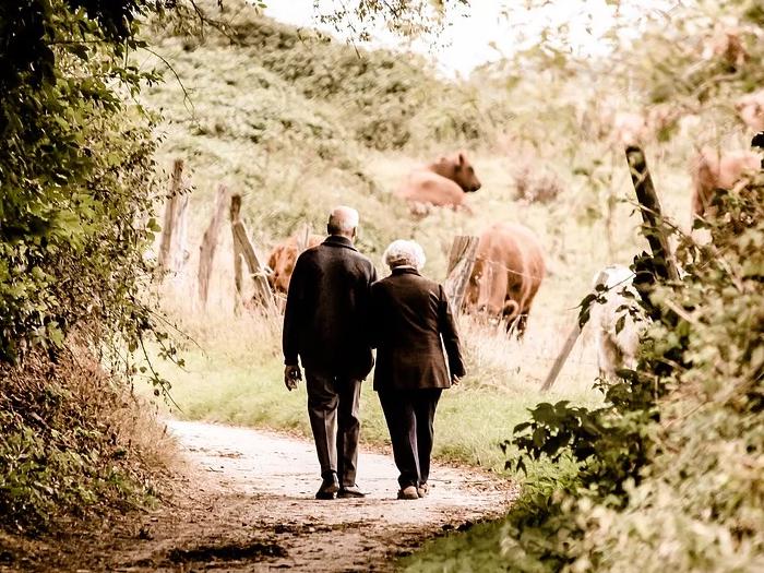 Caminhada é um ótimo exercício para quem está chegando a terceira idade