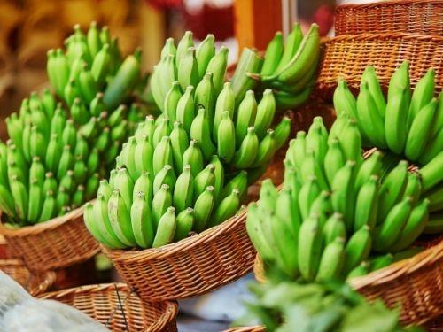 Banana verde auxilia dietas de emagrecimento