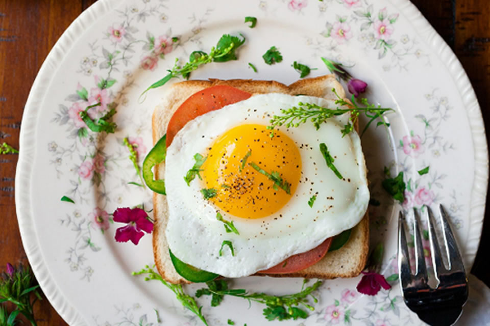 Horário das refeições é tão importante quanto o que comemos para uma alimentação saudável